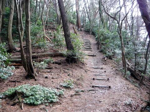 南宮山ハイキングコースの道