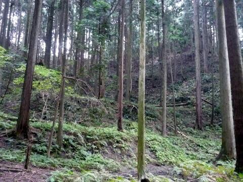 松尾山奥の地形