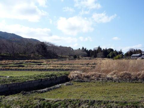 長束正家陣跡周辺の風景
