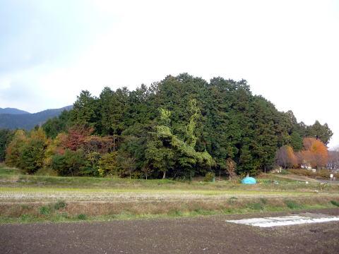 関ヶ原の島津義弘陣跡の高低差